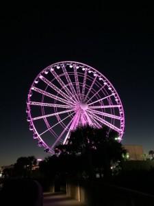Colorful Myrtle Beach Sky Wheel