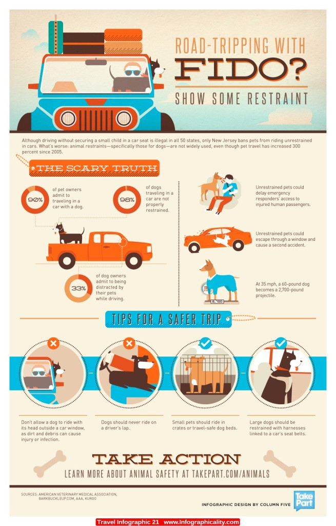 Safety Tips for traveling with your dog